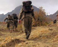 BARZANİ'NİN ADAMLARINA VE PKK'LILARA TÜRKİYE CUMHURİYETİ VATANDAŞLIĞI