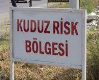 OSMANİYE'DE KUDUZ KARANTİNASI,TEHLİKE BÜYÜYOR